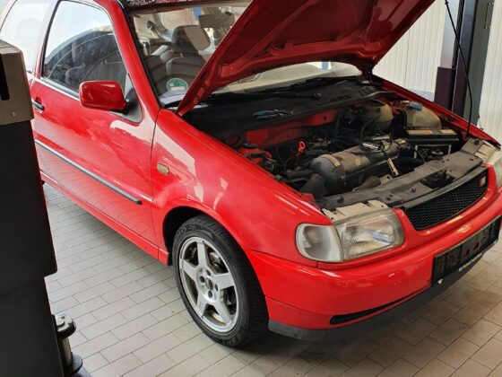 Wiederbelebter VW Polo 6N dank Pro-Tec by bluechemGROUP